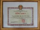 Bằng khen của Chủ tịch UBND tỉnh Quảng Nam